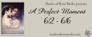 SOR A Perfect Moment VBT Banner 2