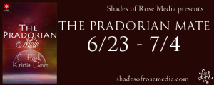 SOR The Pradorian Mate VBT Banner 2