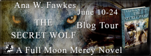 The Secret Wolf Banner-TOUR-450 x 169
