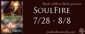 SOR SoulFire VBT Banner 2