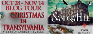 Christmas in Transylvania Banner 851 x 315