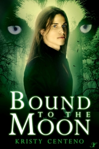 BoundtotheMoonCover