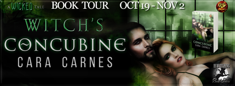 Witch's Concubine Banner 851 x 315